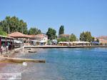 Agria Pilion - Griekenland - De Griekse Gids 001 - Foto van De Griekse Gids