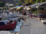 Agria Pilion - Griekenland - De Griekse Gids 011 - Foto van De Griekse Gids