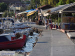Agria Pilion - Griekenland - De Griekse Gids 011