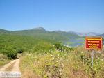 Wetland of Kalodiki (Epirus) foto 1 - Foto van De Griekse Gids