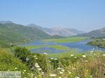 Wetland of Kalodiki (Epirus) foto 3 - Foto van De Griekse Gids