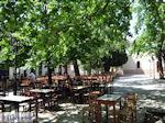 Lafkos Pilion - Griekenland - De Griekse Gids 004