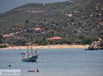 Platania Pilion - Griekenland - De Griekse Gids 010 - Foto van De Griekse Gids