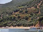 Platania Pilion - Griekenland - De Griekse Gids 012