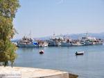 Platania Pilion - Griekenland - De Griekse Gids 013