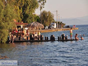 Agria Pilion - Griekenland - De Griekse Gids 019 - Foto van De Griekse Gids