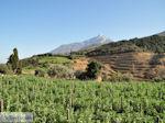 Dit is de Heilige Berg Athos foto 2 | Athos gebied Chalkidiki | Griekenland - Foto van De Griekse Gids