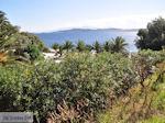 Mooie stranden nabij Eagles Palace Ouranoupolis foto 1 | Athos gebied Chalkidiki | Griekenland - Foto van De Griekse Gids